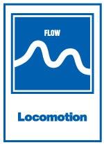 Locomotion Christchurch Adventure Park