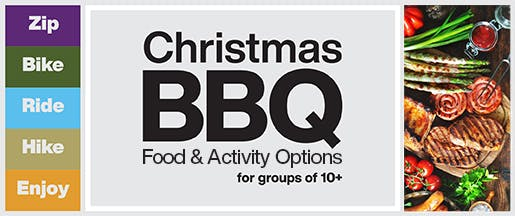 Christmas BBQ Home Page Banner V2 v2