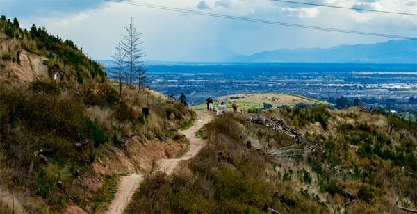 The view from our Christchurch walking track